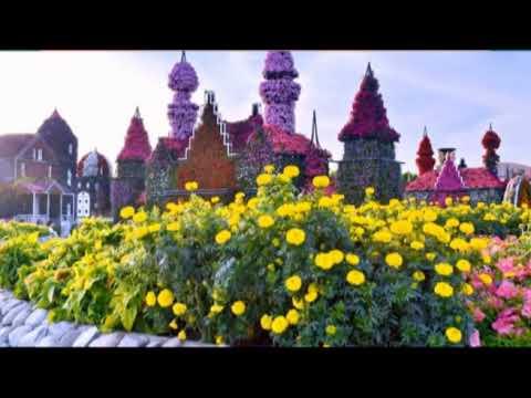 Dubai Miracle Garden 2019 20 Youtube