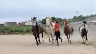 Anne-Gaëlle BERTHO - Spectacle Equestre