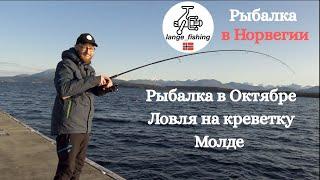 Рыбалка в Норвегии Молде Лодочная пристань Рыбалка в Октябре Морская рыбалка Ловля на креветку