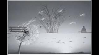 Đã là mùa đông - Sáng tác Trương Quang Đô, Ca sĩ Thanh Tâm