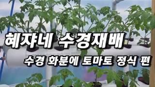 수경재배화분만들기_토마토정식편