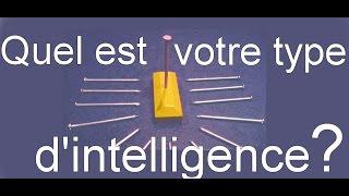 Test d'intelligence : un simple casse-tête pour identifier son type d'intelligence