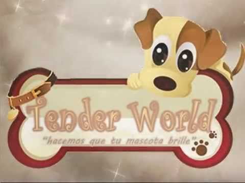 TENDER WORLD VIDEO CORPORATIVO