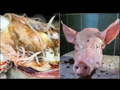 scary!!-see-what-happens-inside-your-body-when-you-eat-pork