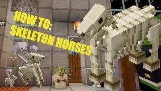 Skeleton Horse in Minecraft: H๐w To