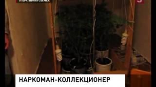 Наркоман-коллекционер предстанет перед судом (13.12.2012)