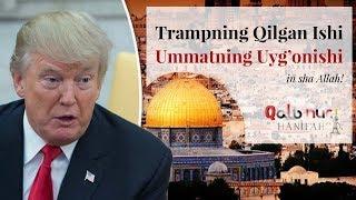 Trampning Qilgan Ishi, Ummatning Uyg