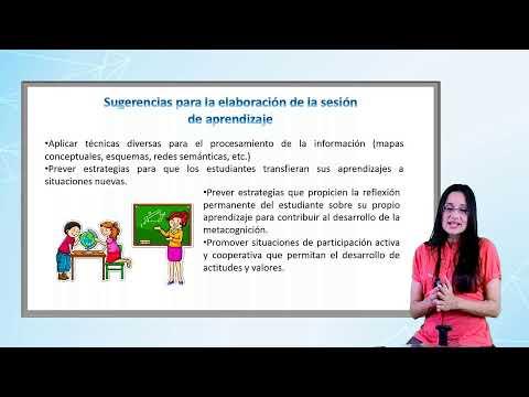 Módulo I: Marco Teórico De La Sesión De Aprendizaje