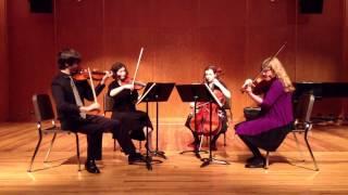 Haydn Op. 64 No. 3, Adagio ma non troppo