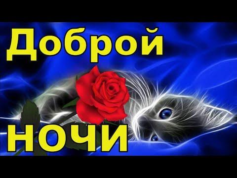 🌙✨Доброй Ночи Сладких Снов🌙✨Красивое Анимационное Пожелание Доброй Ночи Сладких Снов🌙✨  Открытка🌙✨