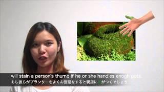 6.green thumb~1分間で学べる寺子屋英会話・イディオム編~