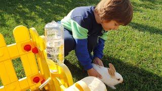 Fatih Selim için sürpriz var ona küçük çok tatlı bir tavşan getirdik bahçemizde bakıcaz büyütücez