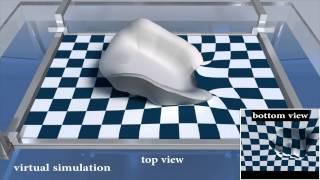 Computational Hydrographic Printing (SIGGRAPH 2015)