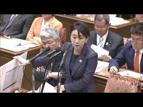衆院決算行政監視委員会 山尾志桜里議員質疑 2017年4月17日