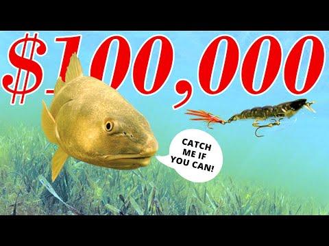 The $100,000 Fish | CCA Star Tournament