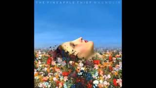 The Pineapple Thief - Breathe