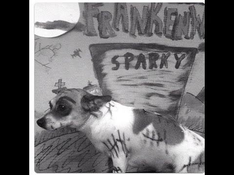 FRANKENWEENIE !SPARKY ! COSTUME MAKEUP DOG!! - YouTube