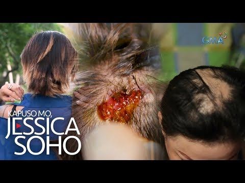 Kapuso Mo, Jessica Soho: Hair Disasters