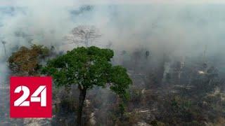 На борьбу с лесными пожарами в Амазонии брошены военные - Россия 24