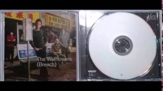 Watch Wallflowers Murder 101 video