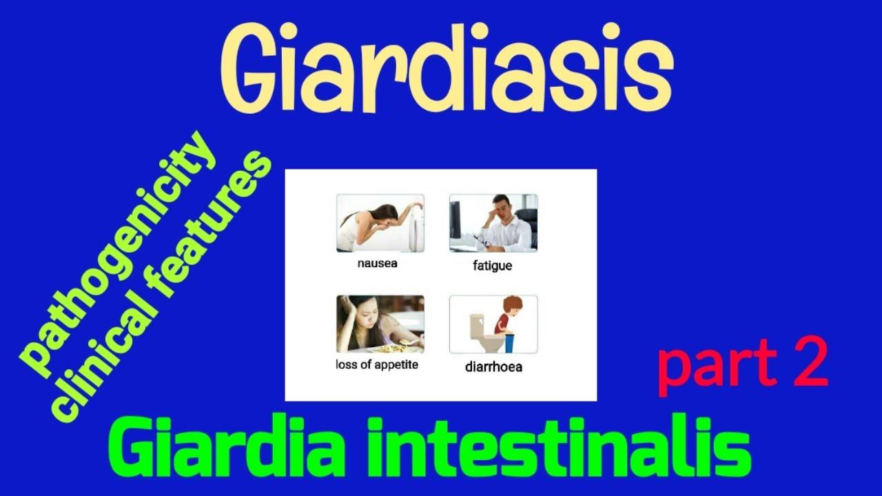 Kerekférgek emberi tünetei, A kerekférgek megelőzése - Tünetek, Körömféreg emberi megelőzés