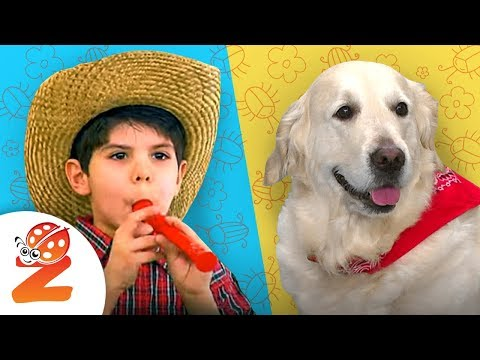 🦈BABY SHARK, Wheels on the Bus & more Nursery Rhymes for Kids ⭐🌴LIVE Stream by #ZouzouniaTV