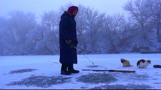 Рыбалка зимой от Михалыча. В поисках активной рыбы. Бабуля ловит окуней(Супер уловистая удочка на карпа и карася. Боковые кивки, мормышки. Заказываем здесь http://mikhalych.com/ Сумасшедши..., 2014-12-18T16:32:43.000Z)