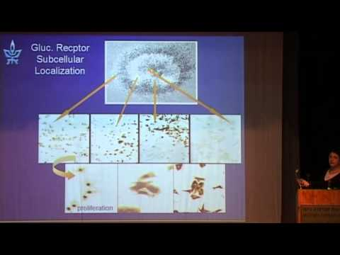 Dafna Benayahu - Nano-bio-engineering and Regenerative Medicine