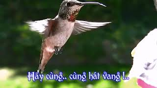 [Karaoke] Cùng Hát Lên - Sing A Song by The Carpenters