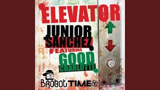 Elevator (Laidback Luke Remix)