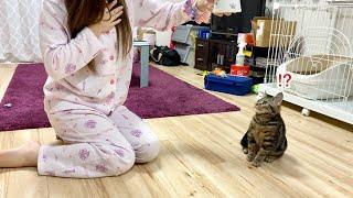 子猫にミルクをあげる瞬間に死んだふりをしてみた結果w
