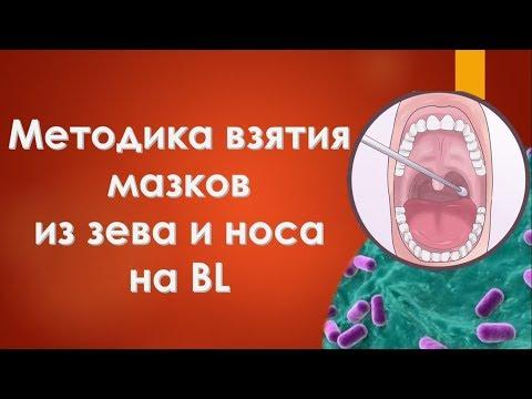 Методика взятия мазков из зева и носа на BL