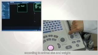 Навчальне відео ДП-50 Вет