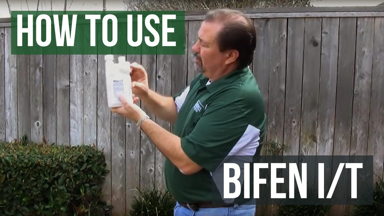 How to use Bifen IT Insecticide Termiticide for termites ants spiders  roaches