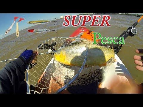 SUPER pesca en Capital federal / Buenos Aires