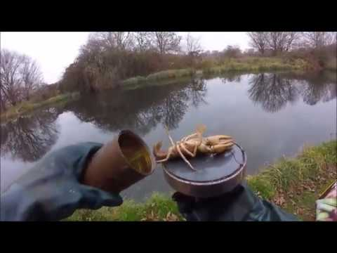 Caught my 3rd crayfish magnet fishing u k 2 dec 2016 for Magnet fishing tips