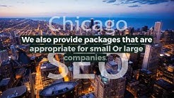 Chicago SEO Companies - Hire Local SEO Specialist Agency   Onlineadszone