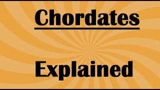 Biology Chordate Features and Characterisitcs