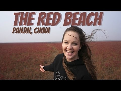 The Red Beach | Panjin, China | Wheelee's Travels