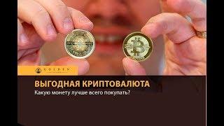 ★PLC Криптовалюта которая быстро растет 2018