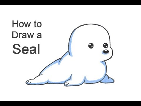 How To Draw A Seal (Cartoon)