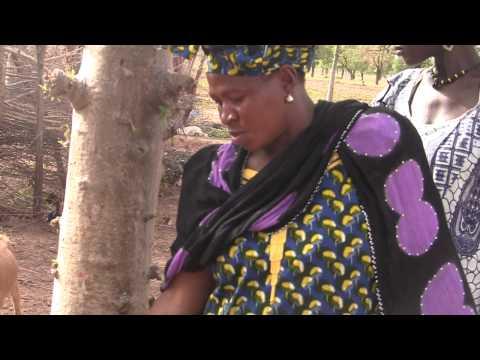 FarmQuest - Reality Radio in Mali: Meet Kafuné