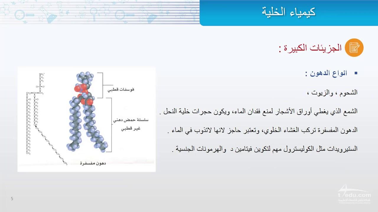 كيمياء الخلية