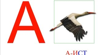 Азбука. Животные. Учим буквы/ABC. Animals. Learn the ABCs