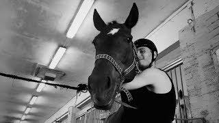 Мои первые тренировки в конном спорте (уроки верховой езды. планерная)