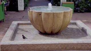Hotel marrakech - Les Jardins de la Médina