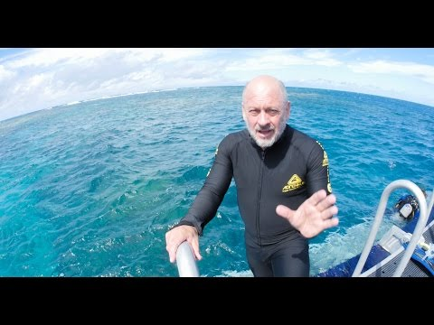 Tim Flannery: Reef Reality Check