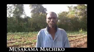 Farmers' Clubs in Zambia