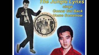 Vince Chu with The Jungle Lynxs sings Gonna Get Back Home Somehow