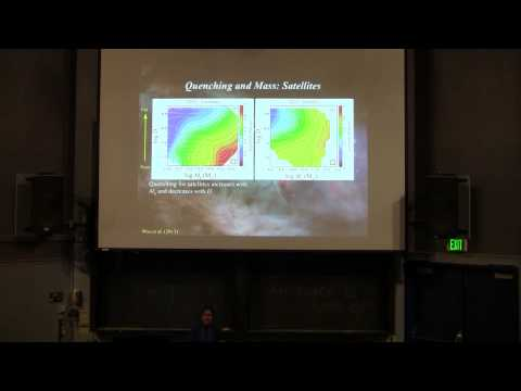 "Joanna Woo ""Dependence of galaxy quenching on halo mass and galaxy structure"""
